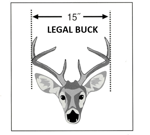 Hunting Deer Hunting Legal or Illegal examples