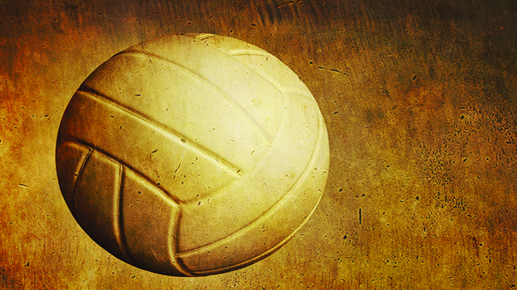 Volleyball Post Championship Tournament (Deadline to Register is Sep 1) - No Fee