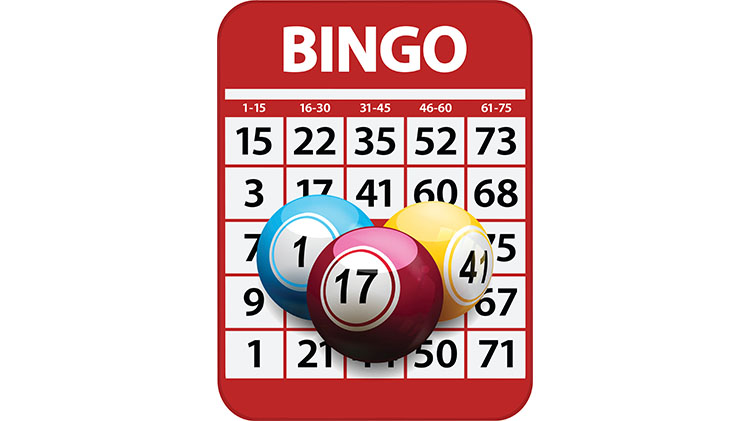 Twenty $ Tuesday Bingo Session - Fee