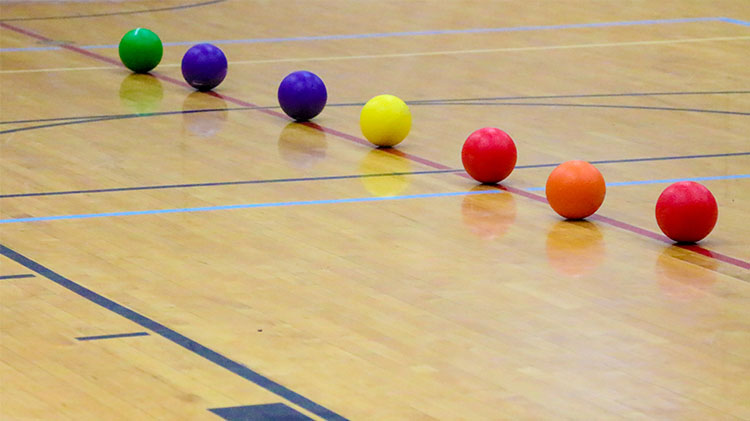 CANCELLED UNTIL FURTHER NOTICE - Company Dodgeball Tournament